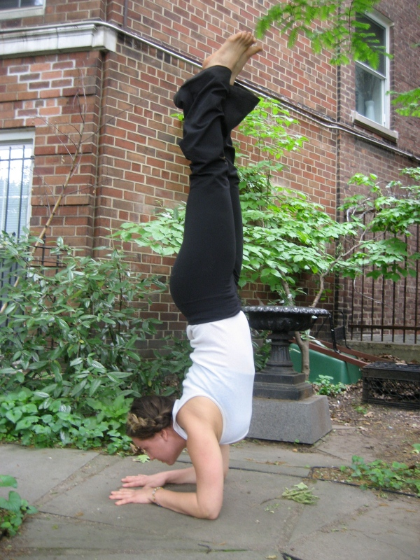 forearm stand, pinch mayurasana. sometimes the only way to get a fresh perspective it to go upside-down.