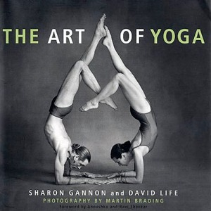 the most beautiful interpretation of forearm stand with a partner.